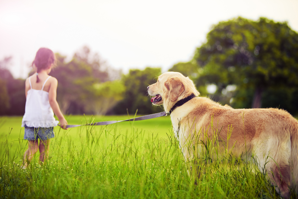 young girl next to her dog on a leash
